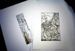 Tree etchings